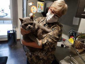 Isabelle et le chat