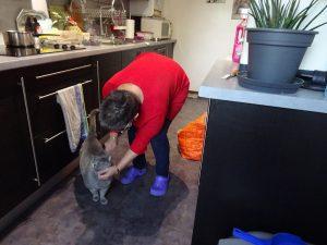 Sandrine et le chat